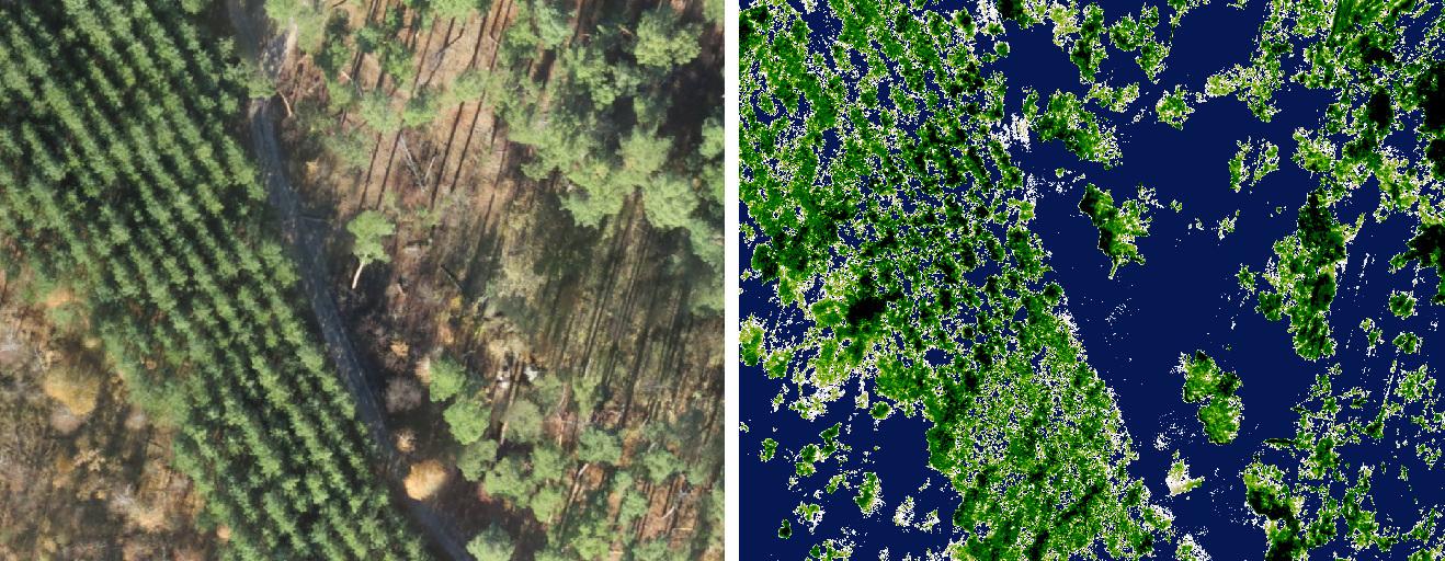 Расчет NDVI по материалам снятым с квадракоптера в национальном природном парке Слобожанский